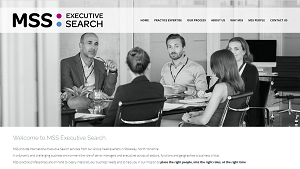 MSS Executive Search